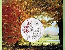 "Los Lobos: SET ME FREE (Rosa Lee) promo 12"" vinyl single (same song on flipside)"