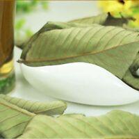 Organic Antidiabetic Wild Guava Leaf Tea Chinese Herb Tea 100g