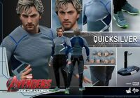 Hot Toys - Marvel Avengers - Age Of Ultron - Quicksilver 1/6 - Officiel