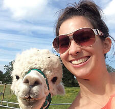 Gift Vouchers for An Alpaca Experience