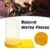 1pcs Beekeeping Beehive Water Feeder Bee Drinking Nest Entrance Beekeeper Cup