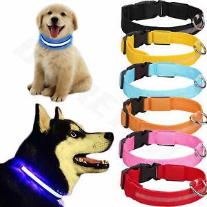 USB Rechargable Dog Pet LED Collar Flashing Luminous Safety Light Up Nylon UK