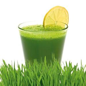 1kg Wheatgrass Powder Organic detox, weight loss