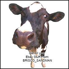 Fridge Fun Refrigerator Magnet HOLSTEIN COW - Version B - Specialty Die Cut Farm