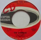 SHIRELLES: THANK YOU BABY rare SCEPTER northern soul 45