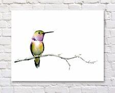Hummingbird Watercolor Painting Bird Art Print by Artist DJ Rogers