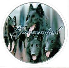 Aufkleber Motiv 2 Groenendael Belgischer Schäferhund Autoaufkleber Sticker