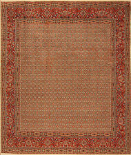 Oriental Persian Rug Real Hand-knotted (292 x 248)cm New - Nr.3069