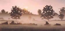 JOHN WATERHOUSE 'EARLY SUMMER ' LTD EDT. GICLEE PRINT 50% OFF  SALE