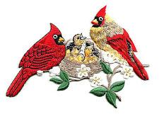 Cardinal - Birds - Cardinals W/Nest - Embroidered Iron On Applique Patch
