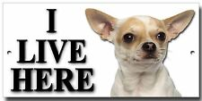 """CHIHUAHUA """"I LIVE HERE"""" METAL SIGN,DOG BREEDS,PREMIUM QUALITY SIGN."""