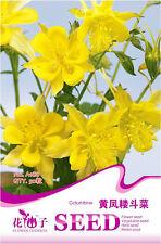 Original Package 50 Yellow Columbine Seeds Aquilegia Vulgaris Flowers A188
