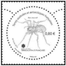 Timbre Insectes TAAF ** année 2018 (30266)