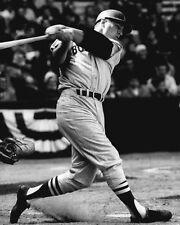 1967 Boston Red Sox CARL YASTRZEMSKI Glossy 8x10 Photo Baseball Print Poster