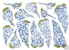 Wisteria Flowers Blue Creative Wall Art Decor Art Transfer Garden Tatouage