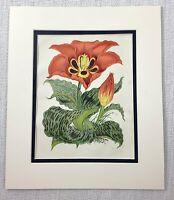 1877 Antique Botanical Print Gerig's Tulip Orange Flowers Floral 19th C Tulips