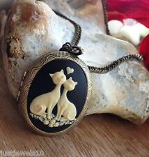 Cat Lovers romantic valentines day heart love you Locket Unusual Gift for her