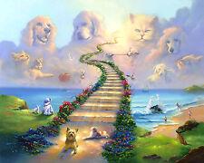 8x10 Rainbow Bridge Stairway to Heaven Dog Cat Memorial Sympathy Premium Print
