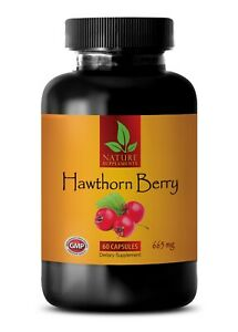 Hawthorn Berry Extract. Powerful Cardiovascular Support (1 Bottle, 60 Capsules)