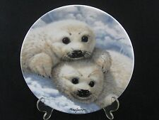 """Royal Grafton """"Baby Seals"""" Collectable 8.5"""" Plate by Mike Jackson"""