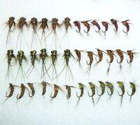 36 Artflies Micro Nymph Flies - Pheasant Tail, Bead Thorax, #18. [MN36]