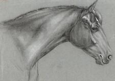 SUPERB OLD MASTER HORSE PORTRAIT STUDY Chalk Drawing c1815 ARTIST MH