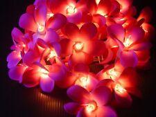 Purple Lavender Frangipanni 35 Flowers Fairy Light String - Mains Powered Plug.
