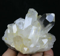 Natural Clear Quartz Cluster Crystal Wand Point Healing Mineral Specimen  289g