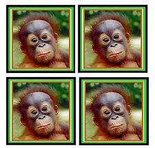 Baby Orangutan-Juego De 4 divertido Posavasos-Regalo / Actualidad - A Estrenar