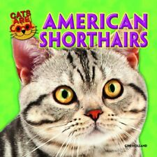 American Shorthairs Cats Are Cool Powerkids
