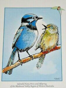 Splendid Blue Fairy Wren & Offspring by Gent Blackwood Valley WA Unframed Print