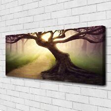 Leinwand-Bilder Wandbild Canvas Kunstdruck 125x50 Baum Natur