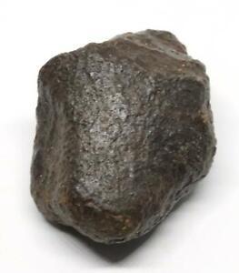 Chondrite MOROCCAN Stony METEORITE Genuine 50.6 grams w/ COA  #16577 3o