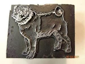 Printing Letterpress Printer Block Decorative Pug Dog Print Cut