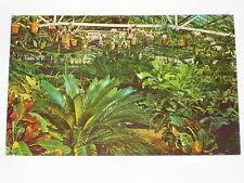 VINTAGE Hodges Gardens Postcard Highway 171 Many, Louisiana Greenhouses