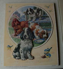 COCKER SPANIEL DOGS STEPPING OUT JIGSAW PUZZLE WITH PLAY TRAY BY VICTORY