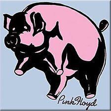 Pink Floyd Pig square steel fridge magnet   (cv)
