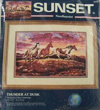 Sunset Needlepoint Kit Thunder At Dusk #12145 Open Pkg