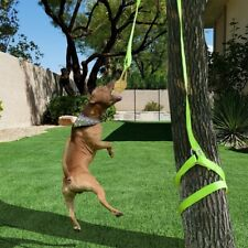 Retractable Interactive Dog Toy, Rope Tug Of War Toys For Medium Or Large Dog US