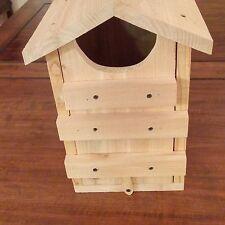 Screech Owl House Cedar