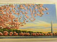 Post Card Washington Monument Potomac Cherry Blossoms Washington DC Linen 1940s