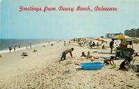 Dewey Beach Royal Swan Apartments Hobo Beach Motel Delaware DE Postcard