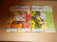 CALENDRIER PTT  1991  lapin /chat