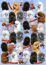 Poodle Dog Christmas Gift Wrapping Paper - by Starprint - One semi gloss sheet