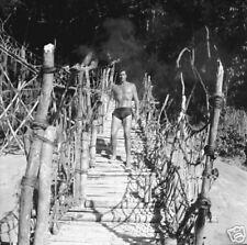 TARZAN RON ELY HUNKY RARE ORIGINAL 1966 NBC TV PHOTO