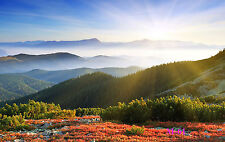 20x10FT Mountain Scenery Vinyl Studio Backdrop Photography Photo Background M61