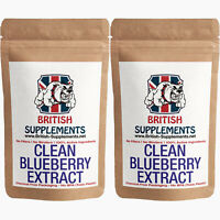 BlueBerry Extract Caps 25% OPC Antioxidant Anti Inflammatory UK 2 Month Supply