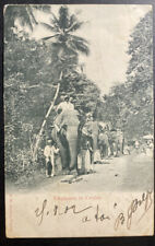 1902 Ceylon RPPC Real Picture Postcard Cover To Marseille France Elephants
