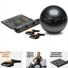 Stability Ball, Resistance Bands, and Mat Self-Guided Exercise Fitness Kit