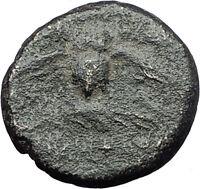 PERGAMON in MYSIA 133BC Athena OWL Authentic Genuine Ancient Greek Coin i61611